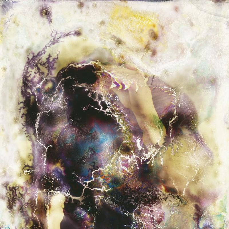 photo-champignon-microbe-07-800x800
