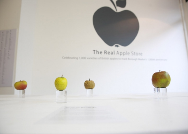 real-apple-store-02-2014_0